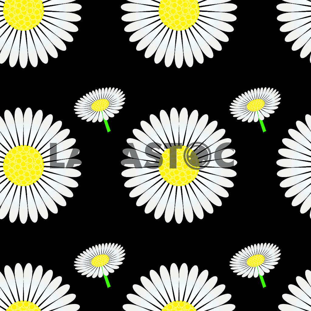 Seamless pattern with chamomile — Image 79569