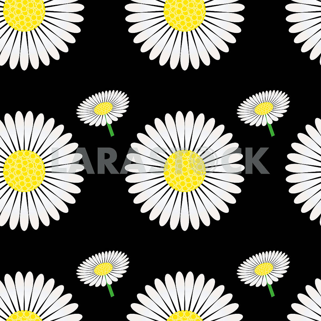 Seamless pattern with chamomile — Image 79570