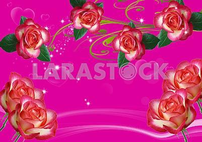 3d illustration, hot pink background, large roses, translucent hearts