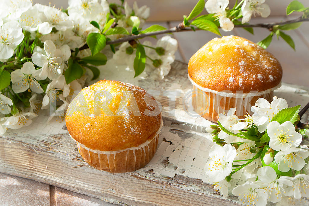 Mini muffins with cherriy flowers close up. — Image 83112