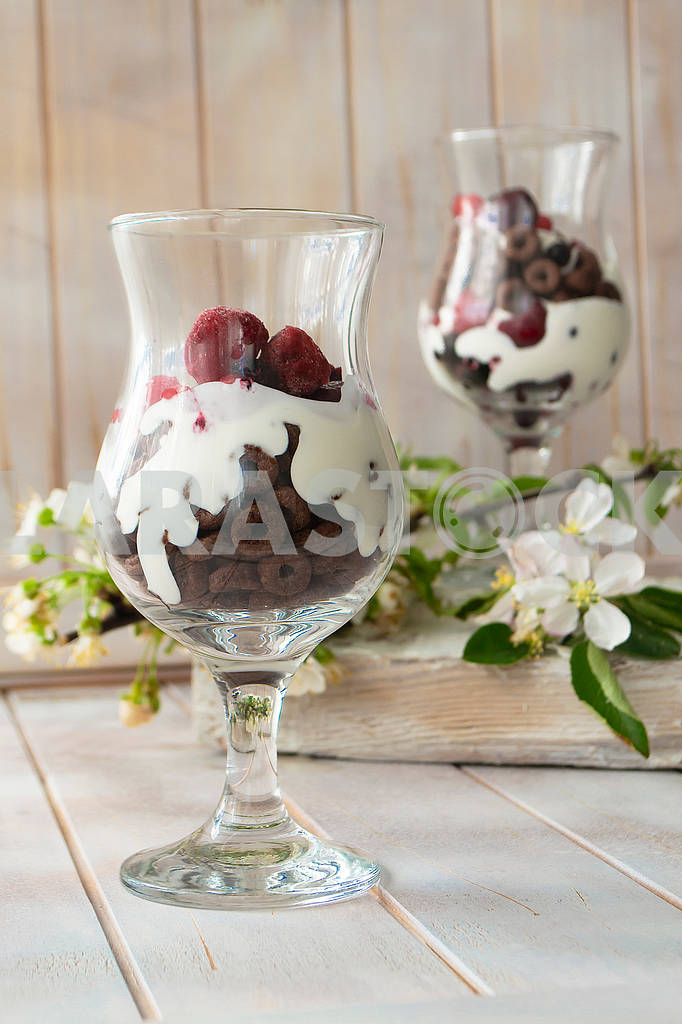 Layered dessert with chocolate cake, whipped cream and raspberry in a jar, spring flower decoration — Image 83117