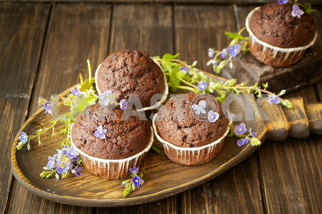 Chocolate muffins with blue spring flowers on dark backgroun — Image 83118