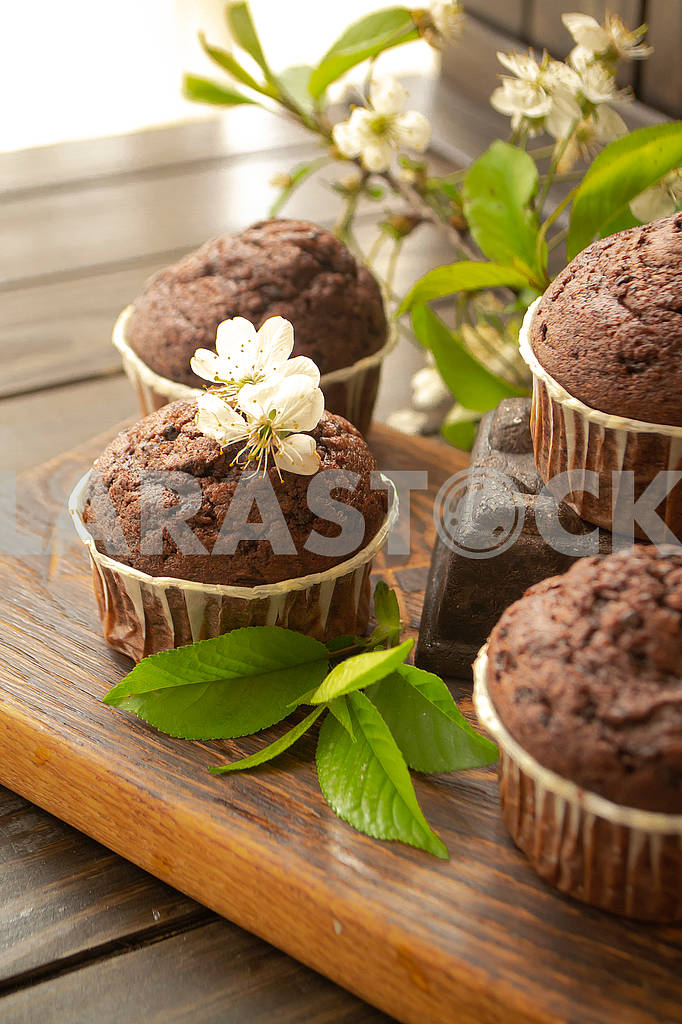 Chocolate muffin on rustic dark wooden background with flowers of cherry — Image 83126