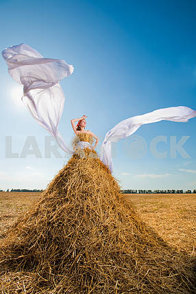 Beautiful girl in the hay with white wings