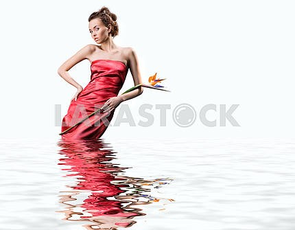 Beautiful young woman in a  red dress stands in the water. Holds