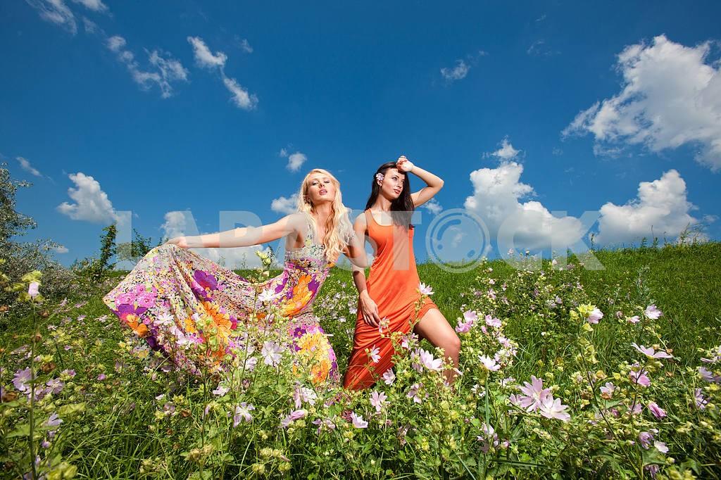 Две подруги веселятся в поле цветов — Изображение 9964