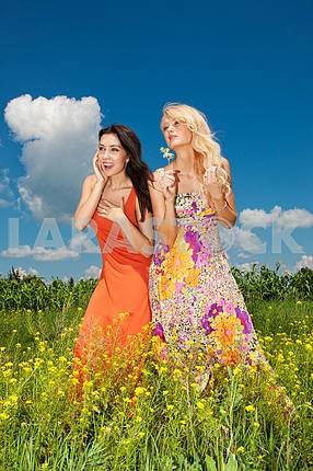 Две подруги веселятся в поле цветов